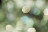 a dreamlike green bokeh background
